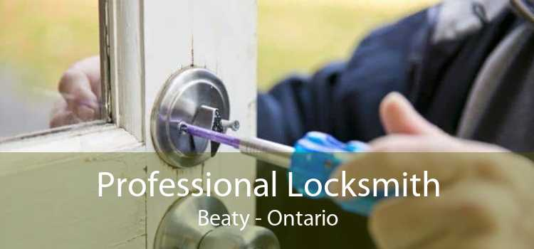 Professional Locksmith Beaty - Ontario
