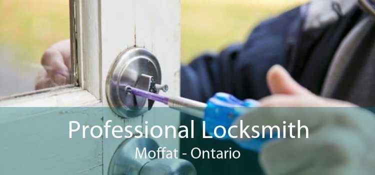 Professional Locksmith Moffat - Ontario