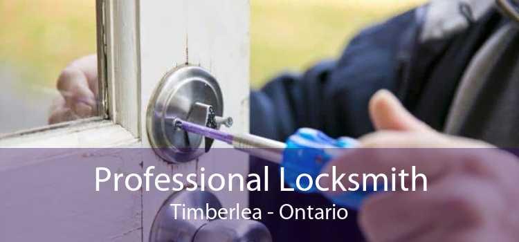 Professional Locksmith Timberlea - Ontario